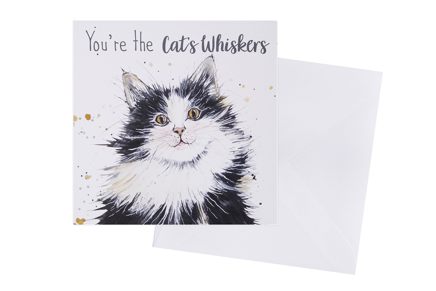 CATS WHISKERS CARD