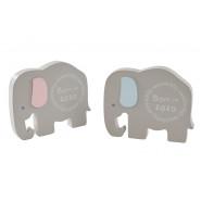 ELEPHANT 2020 BABY 2A